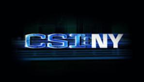 CSI : NY logo